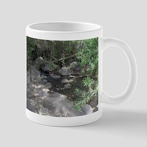 Golan Heights Mug Shot