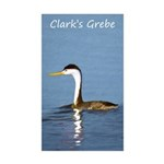 Clark's Grebe Sticker (Rectangle 10 pk)
