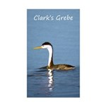 Clark's Grebe Sticker (Rectangle 50 pk)