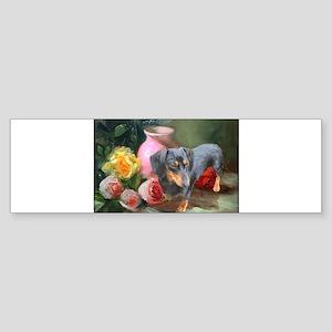 Vase Doxie Bumper Sticker