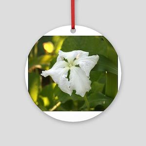 White Squash Flower Ornament (Round)