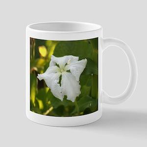 White Squash Flower Mug