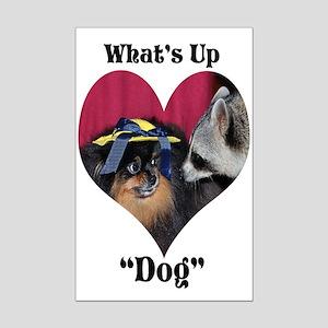 Raccoon, Pomeranian Mini Poster Print