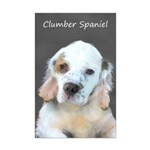 Clumber Spaniel Mini Poster Print