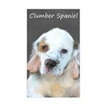 Clumber Spaniel Sticker (Rectangle)