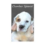 Clumber Spaniel Sticker (Rectangle 50 pk)