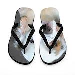 Clumber Spaniel Flip Flops