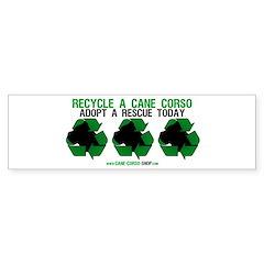 Recycled Cane Corso Bumper Bumper Sticker