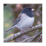 Junco on a Branch Tile Coaster