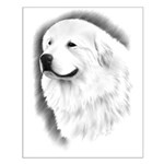 Great Pyrenees Headstudy Small Poster