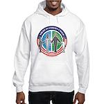American Families United Hooded Sweatshirt