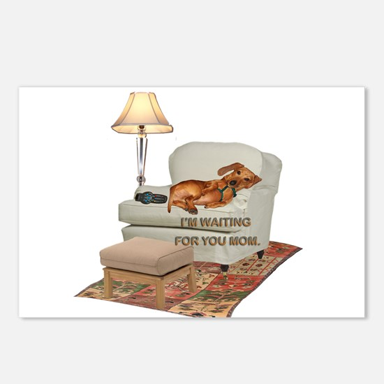 TV Doxie Postcards (Package of 8)