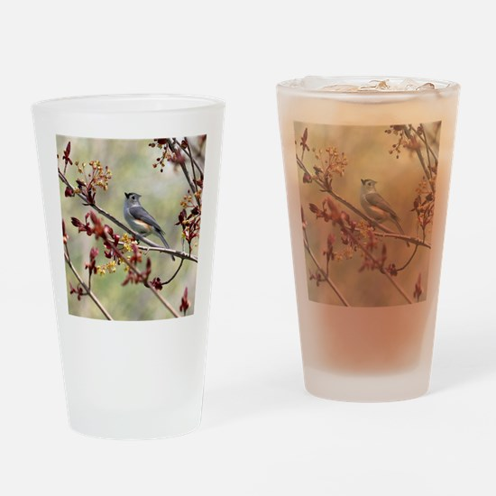 Tufted titmouse bird Drinking Glass