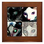 LabRat the Wonder Cat's Funky Framed Tile
