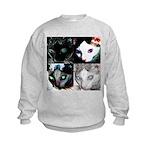 LabRat the Wonder Cat's Funky Kids Sweatshirt