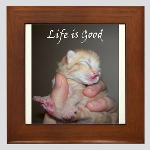 Life is Good Kitten Framed Tile