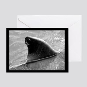 Black & White Dolphin Fin Greeting Card