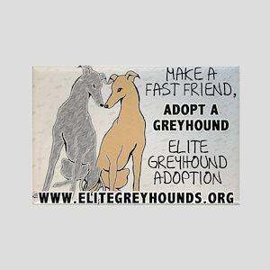 Elite Greyhound Adoption Rectangle Magnet