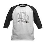 Alpaca 4 Line Kids Baseball Jersey
