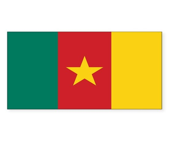 Cameroon flag rectangle decal
