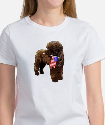 Brown PWD with Flag Women's T-Shirt