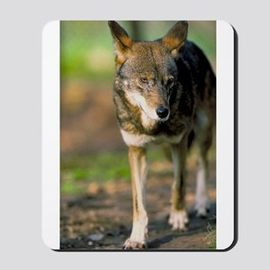 """""""Red Wolf"""" Mousepad"""