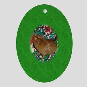 Guinea Pig Oval Ornament