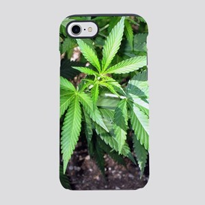 Cannabis Plant iPhone 7 Tough Case
