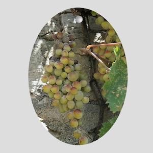Tu B'shvat Summer Grape Vine Oval Ornament