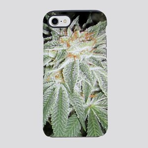White Kush Cannabis iPhone 7 Tough Case