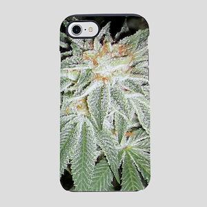 White Kush Cannabis iPhone 7 Tough Case