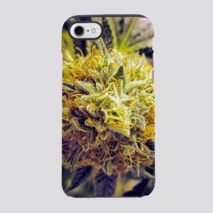 Kush Plant iPhone 7 Tough Case