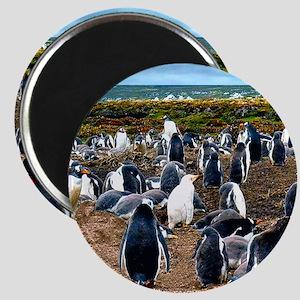 """Gentoo Penguin 2.25"""" Magnet (10 pack)"""