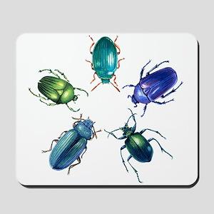 Five Shiny Beetles Mousepad