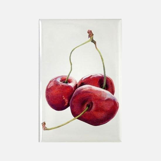 Three Cherries Rectangle Magnet (10 pack)