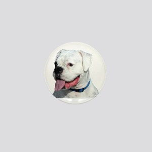 White Boxer Mini Button