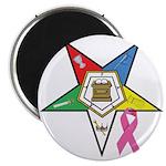 Teardrop OES BC Awareness Magnet