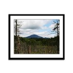 Clouded Whiteface Framed Panel Print