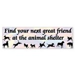 Next Great Friend Bumper Sticker (10 pk)