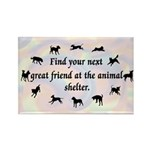 Next Great Friend Rectangle Magnet (100 pack)