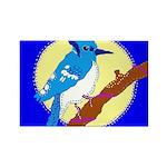 Blue Jay Rectangle Magnet (10 pack)