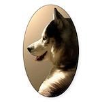 Siberian Husky Sled Dog Sticker (Oval 50 pk)