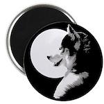 Siberian Husky Sled Dog Magnet