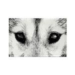 Siberian Husky Sled Dog Rectangle Magnet (100 pack