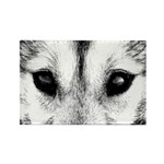 Siberian Husky Sled Dog Rectangle Magnet (10 pack)