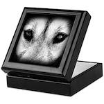 Wolf Pup Jewelry Box Sled Dog Keepsake Box