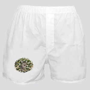 TABBY CAT IN FIELD OF DAISIES Boxer Shorts