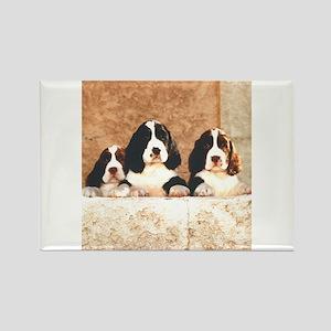 English Springer Pups 2 Rectangle Magnet