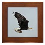 Eagle with Fish II Framed Tile