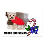 MERRY CHRISTMAS YORKSHIRE TERRIER Postcards (Packa